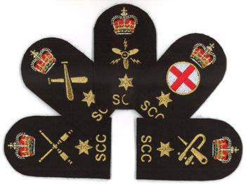 Picture for category Adult Specialisation Badges