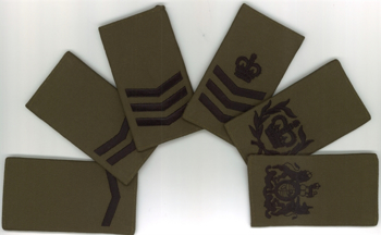 Picture of RMC Rank Slides