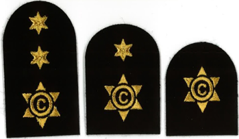 Picture of Cook / Steward (Gold Badges)