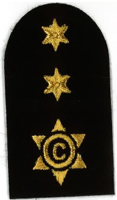Picture of (Serial 076.1) Cook / Steward 1st Class (Gold)