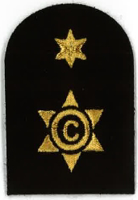 Picture of (Serial 098.1) Cook / Steward 2nd Class (Gold)