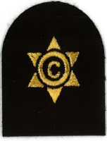 Picture of (Serial 111.1) Cook / Steward 3rd Class (Gold)