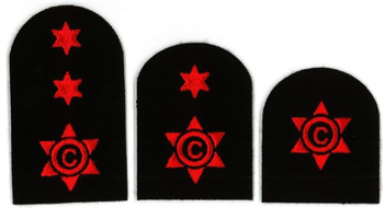 Picture of Cook / Steward (Red Badges)