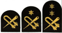 Picture of Seamanship (Gold Badges)