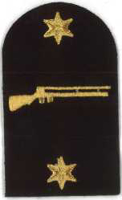 Picture of (Serial 156.1) Small Bore Marksman (Gold)