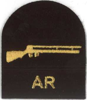 Picture of (Serial 162.1) Air Rifle (Gold)