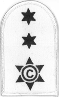 Picture of (Serial 077) Cook / Steward 1st Class (Blue on White)