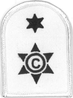 Picture of (Serial 098.3) Cook / Steward 2nd Class (Blue on White)