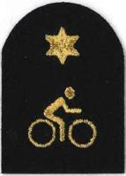Picture of (Serial 168.1) Mountain Bike Intermediate (Gold)