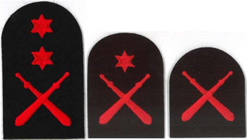 Picture of Physical Training (Red Badges)