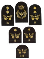 Picture of Communications Information Systems (Gold Badges)