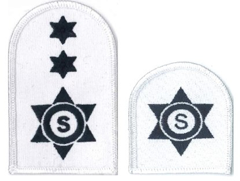 Picture of Catering Stewarding (Blue on White Badges)