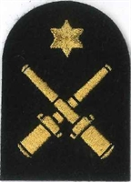 Picture of (Serial 079.6) Drill Instructor Class 2 (Gold)