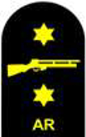 Picture of (Serial 162.7) Air Rifle Marksman (Gold)