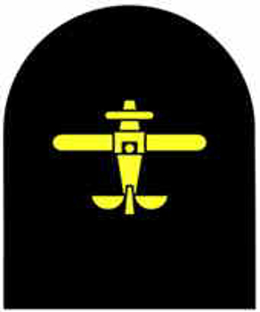 Picture of (Serial 217.1) Basic Airman/Airwoman (Gold)