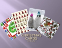 Picture of Christmas Cards (10 pack)